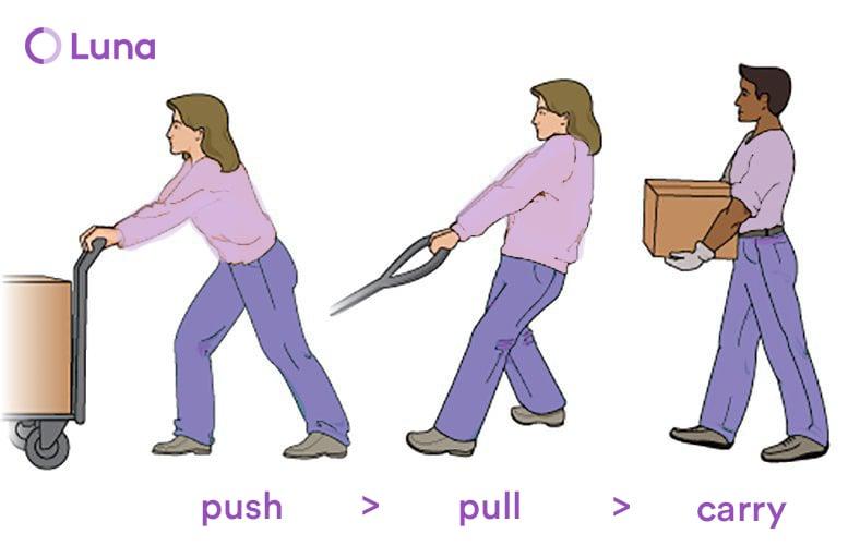 Luna Push Pull Carry