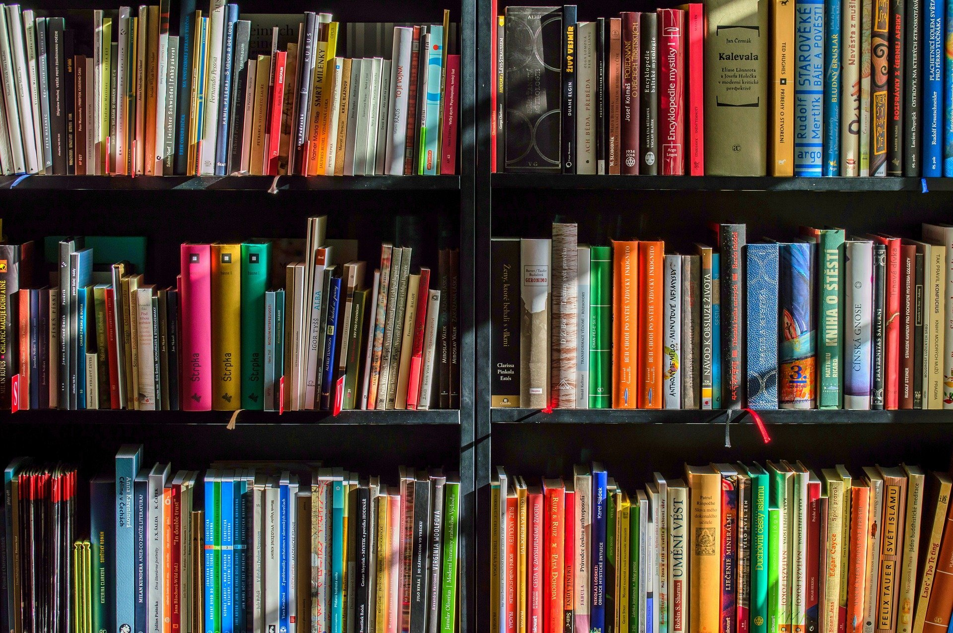 Physical Therapy Books - Five Must-Reads Worth the Investment
